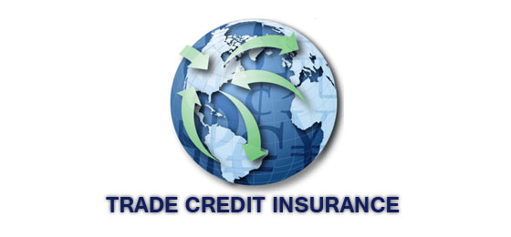 Grab The Advanced Impact Of Using Trade Credit Insurance